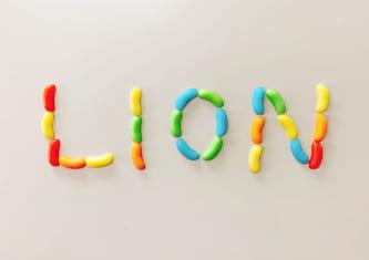 お菓子でつくったライオンの文字の写真